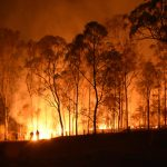 The Fires in Australia and Hurricane Sandy